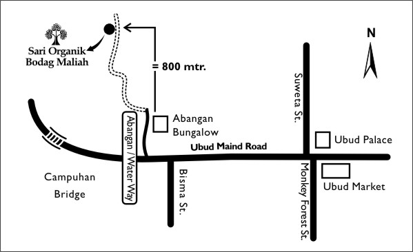 Image Result For Map Of Bali