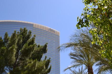Vegas Day 4 (11)
